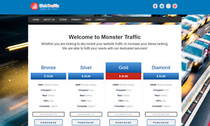 Web Traffic Service Website For Sale Turnkey Business Free Hosting