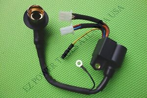 Pulsar Pg2000is Pg2000isn 79cc 80cc 1 6kw 2kw Inverter Generator Ignition Coil