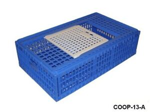 3 Pack Game Bird Transport Crate Plastic Poultry Cage Economy Chicken Coop 13