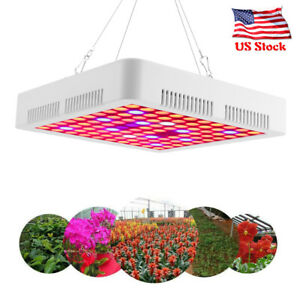 5000w Led Grow Light Full Spectrum Greenhouse Hydroponic Plant Veg Flower Bloom