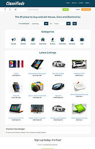 Premium Local Classified Ads Website With Advanced Search Filters