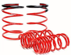 Skunk2 Racing 519 05 1670 Lowering Coil Spring Set Fits 02 04 Rsx