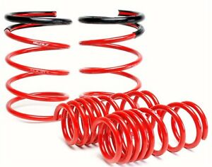 Skunk2 Racing 519 05 1672 Lowering Coil Spring Set Fits 05 06 Rsx