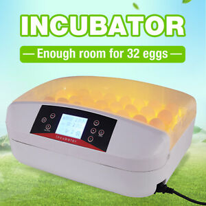32 Eggs Digital Incubator Automatic Clear Hatcher Chicken With Led Display