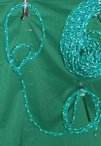 Cattle Bovine Adjustable Halter With Rope Lead Showing Green And White Poly