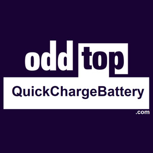 Quickchargebattery com Premium Domain Name For Sale Dynadot