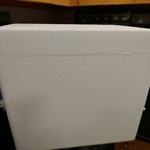 Styrofoam Insulated Shipping Cooler Container Deep 18lx15wx16h Local Pickup