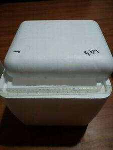Styrofoam Insulated Shipping Cooler Container 10lx8wx10h Ext 9x8x9 Interior