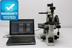 Olympus Ck40 f100 Inverted Phase Contrast Microscope