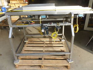 Laning Channeling Conveyor Stainless Steel 17 By 66