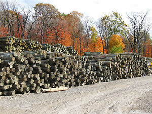 400 Used Treated Wood Guardrail Posts 7 9 Inch Diameter 5 1 2 6 Feet Long