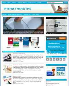 Internet Marketing Plr Niche Website With Integrated Store For Sale