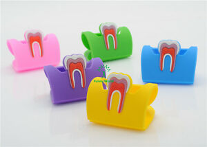 Dental Clinic Tooth Business Name Card Holder Case Display Stand 5 Color New