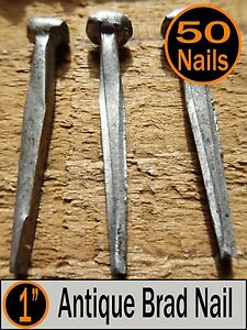 50 1 Antique Brad Nail Vintage Rustic 1 Small Brad Nails