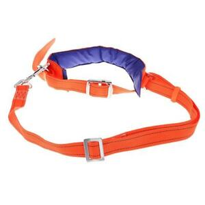 Rope Access Rock Climbing Harness Waist Belt Safety Fall Protection Lanyard