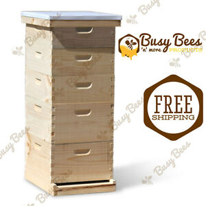 Langstroth Bee Hive 10 Frame 2 Deep 3 Medium includes All Frames