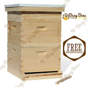 Langstroth Bee Hive 10 Frame 2 Deep 1 Medium includes All Frames