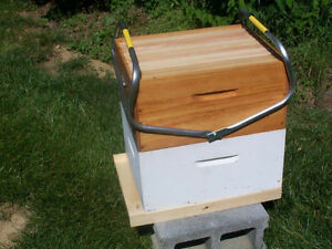 One Person Hive Lifting Tool
