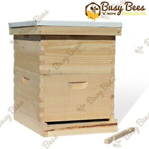 Langstroth Bee Hive 10 Frame 2 Deep Brood includes All Frames Foundations