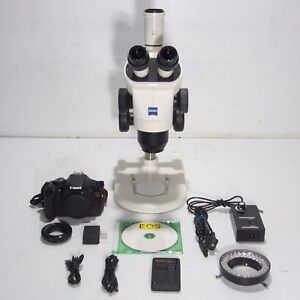 Carl Zeiss Stemi 2000 c Stereo Microscope W Canon Dslr Camera Light