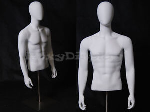 Table Top Egghead Male Mannequin Torso With Nice Figure And Arms egtmsa md
