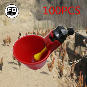 100pcs Poultry Water Drinking Cups Chicken hen quail Automatic Drinker