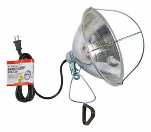 Brooder Lamp 10 5 By Little Giant Mfrpartno 170017 Partno 170017 By Miller Ma