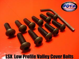 Low Profile Ls1 Lsx Ls6 Valley Cover Bolts For Fast Intake Installation