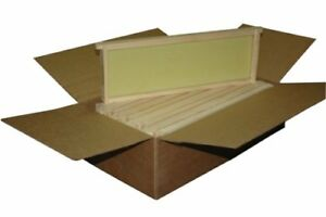 Honey Bee Hive Assembled Commercial Frame 10pc Wax Natural Rite Cell Foundation