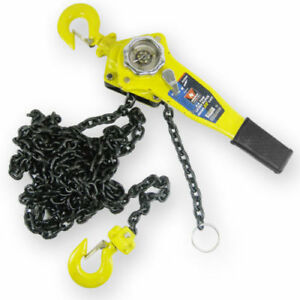 3 4 Ton Chain Hoist 10ft Lift Chain Dia 1 4 W Mechanical Load Brake
