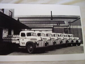 1947 Ford Milk Trucks With Bottles Fleet 11 X 17 Photo Picture