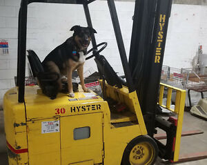 Hyster Forklift J30bs Electric 36 Volt 2850 191 5 Load Height W charger