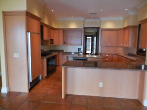 Granite Stone Countertops Island Slab Kitchen Butlers Area