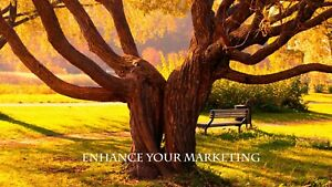 Promote And Advertise Your Business Or Service Online
