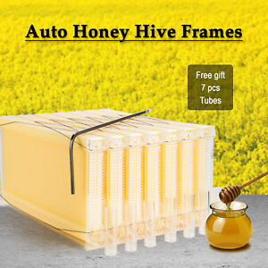 Beekeeping Bee Hive Complete Auto Honey Flowing 7 Frame Harvesting