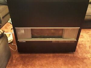 Williams Enclosed Front Room Propane Heater 65000 Btu With Blower
