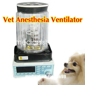 Vet veterinary Anesthesia Ventilator Pneumatic Driving Electronic Controll Sale