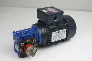 Leeson 1 4hp Metric Motor C63t17fz2c With Motovario Nmrv 030 Worm Gear Reducer