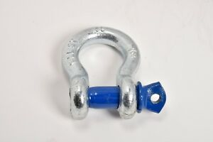 1 2 Bow Shackle D Ring W Blue Clevis Screw Pin Anchor 2 Ton 4400 Lbs Capacity