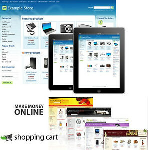 Online Store Website Shopping Cart Seo Friendly 65 Free Templates Paypal Shop