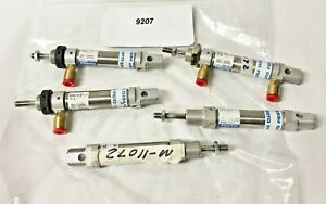 Festo Dsnu 5 8 1 p a Pneumatic Cylinder Lot Of 5 9207