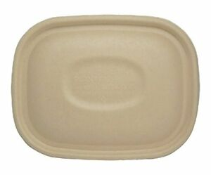 World Centric Ctl sc u3 100 Compostable Clear To Go Box Lids For 8 8 X 6 8