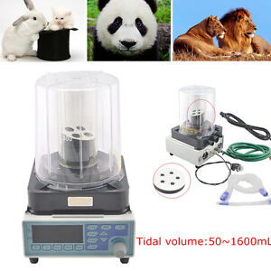 Vet Anesthesia Ventilator Pneumatic Breath Machine 2 Wind Bellows Tidal Sale