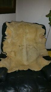 Vintage L l Bean Sheep Skin Seat Cover