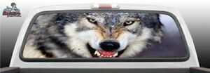 Angry Wolf Eyes Staring Growling Perf Rear Window Graphic Decal Suv