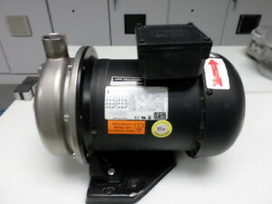 Megga Pump And Motor 3 Phase 3 4 Hp Stainless Steel Shaft