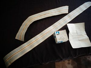 1972 Amc Gremlin Rally Stripes Partial Kit Rh Door quarter Panel 8121476 Nos