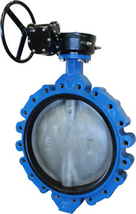 24 Cps Lug Style Di Butterfly Valve 316ss Disc Epdm Gear Operated