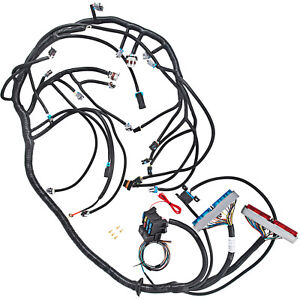Nice 1999 2003 Dbc Ls1 Standalone Wiring Harness With T56 Transmission Cool