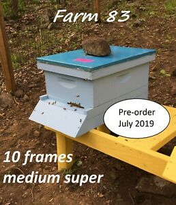 Pre order July Complete 10 Frames Bee Hive With Live Bees Queen Medium Super